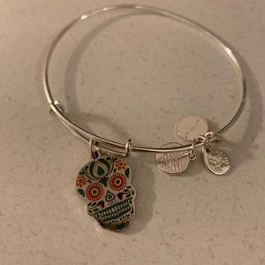 Alex and Ani silver skull charm bracelet colored